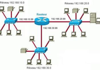 Exercices Installation d'un réseau